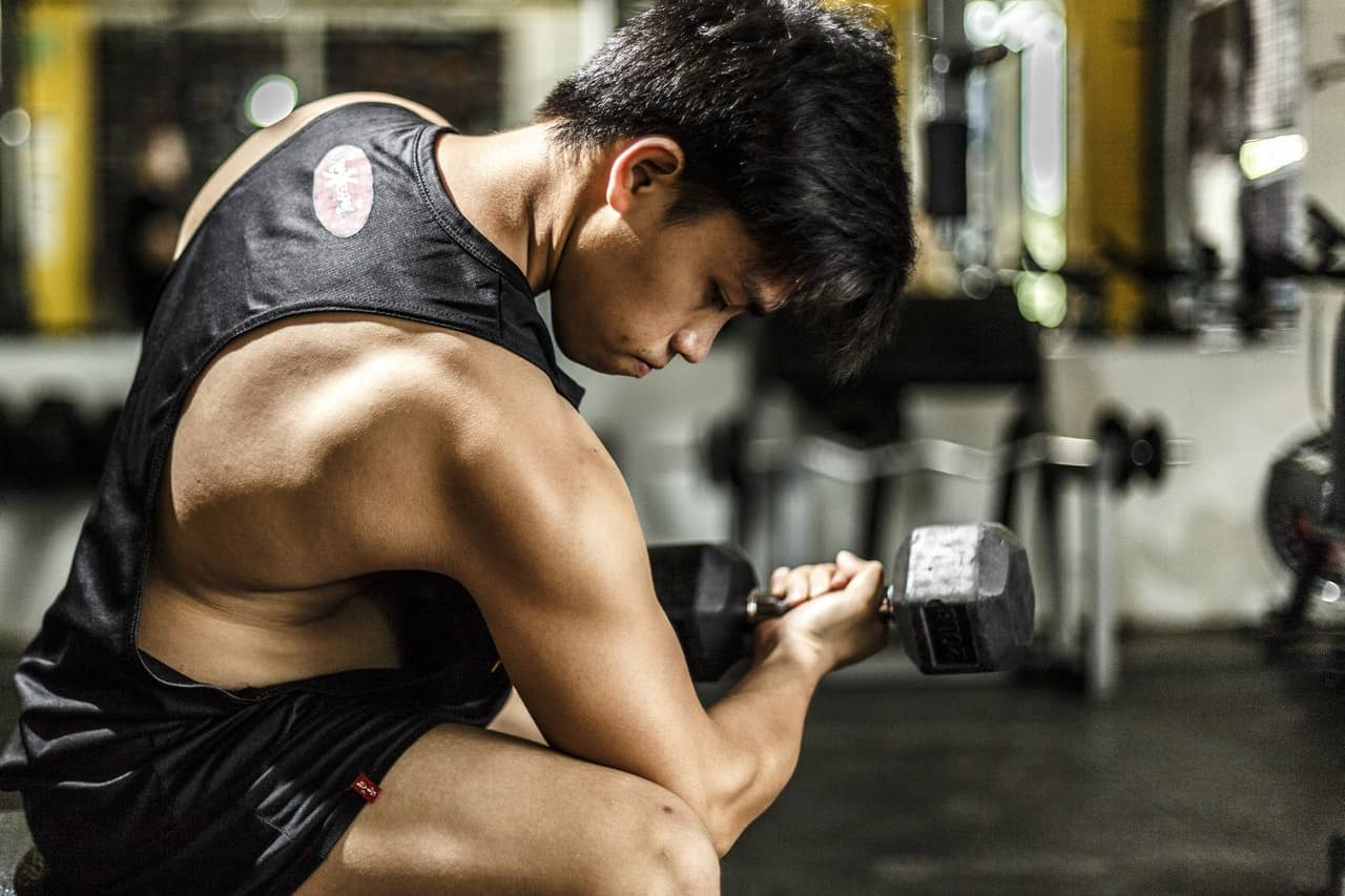 ectomorph workout