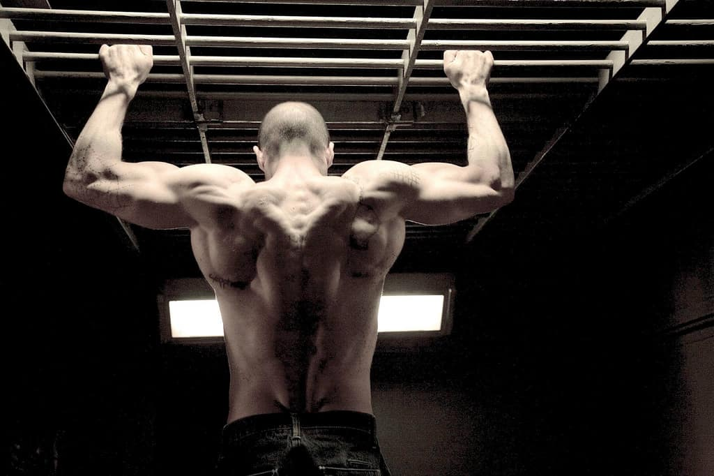 Best Exercises For Back : The Only 3 You Need To Build  a Massive Back