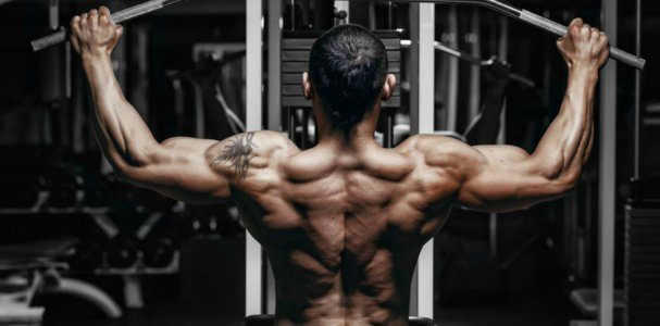 best exercises for back 1